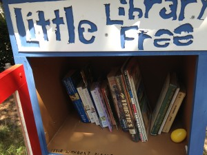 littlefreebooks